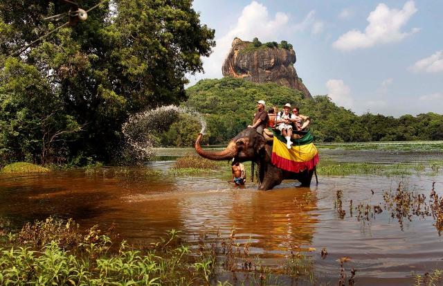 كولومبو- مقر إيواء الفيلة - دامبولا