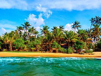 8 أيام في سريلانكا